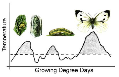 Agriculture & Irrigation - Disease Managment - Degree Days